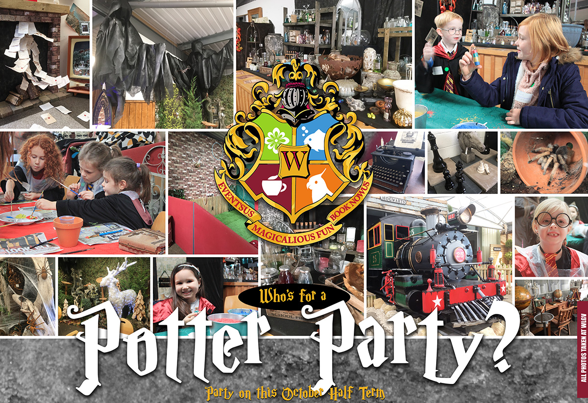 Harry Potter party northamptonshire
